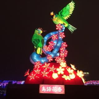 2017 台湾灯会马拉松