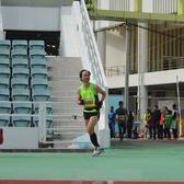 2015澳门国际马拉松  终点入场 时间4:15~5:00