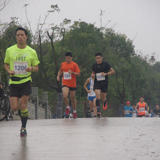 2015 光明杯海湾森林绿跑半程马拉松