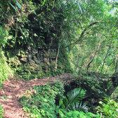 比赛路线(热带雨林!)