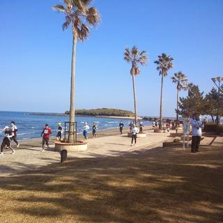 2014青岛太平洋海洋马拉松赛