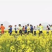 2018远安田野马拉松