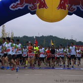 花果中的马拉松(1)