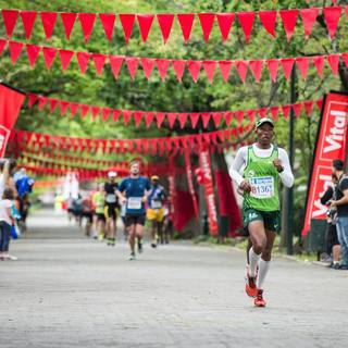 2016 开普敦马拉松