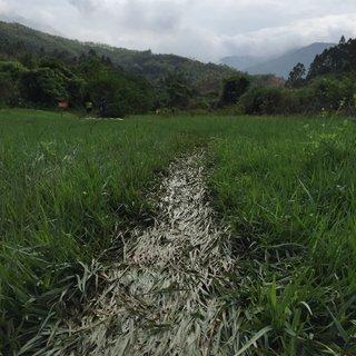 最美乡村山重越野跑