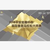 2018 平安金融中心国际垂直马拉松大师赛