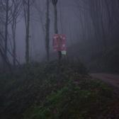 沐野青城国际越野挑战赛上皇观摄影点