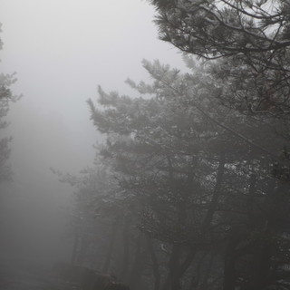 北山之巅金华越野(11).jpg