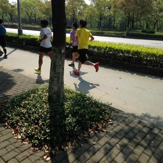 2016 上海闵大荒半程马拉松赛